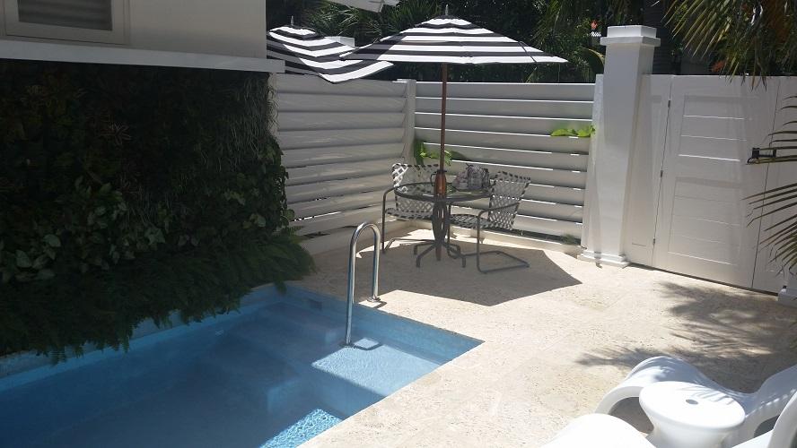 Oasis Spa Villa Private Plunge Pool